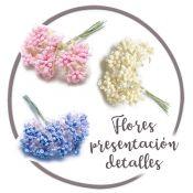 Flores para presentación