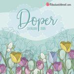Catalogo Doper 2020